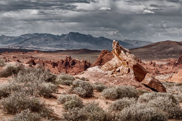 Valley of Fire by Sue Vo-Ho on 500px