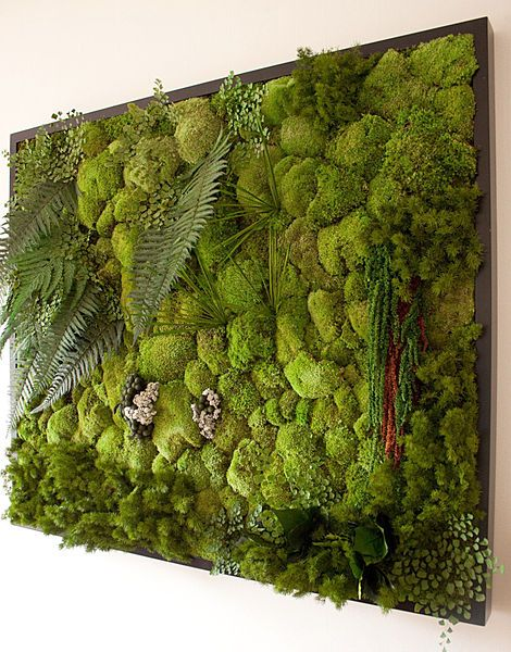 Stabilized plant green wall