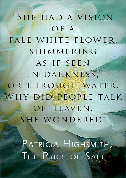 Patricia Highsmith   The Price of Salt   She Winked