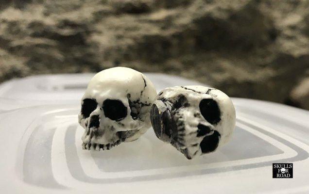 2Pcs Skull Air Valve Stem Caps Skull Ventilkappen Skulls for Road half  | eBay