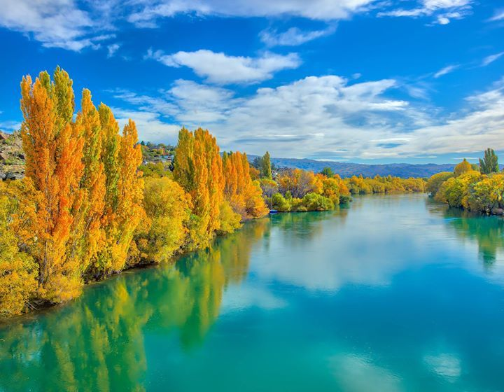 Here's something amazing I saw this afternoon on the way to Dunedin... Autumn in NZ is really really pretty. This is Alexandra. #treyratcliff More on my blog at http://ift.tt/qCe472
