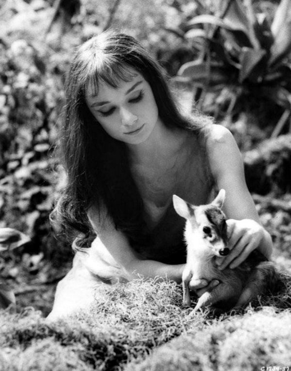 17 Best images about *Audrey Hepburn on Pinterest | Sons ...