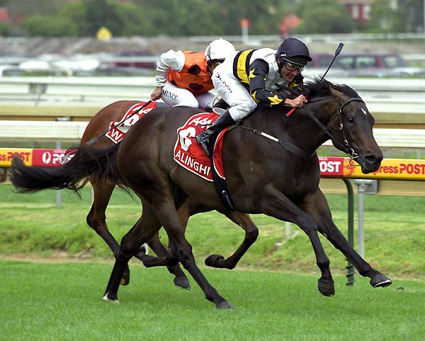 Alinghi wins the 2004 Blue Diamond Stakes.