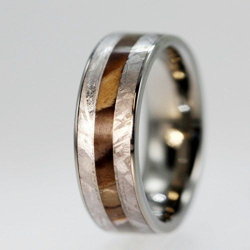 Best Petrified Wood and Gibeon Meteorite inlaid on a Titanium Ring Engraving Available