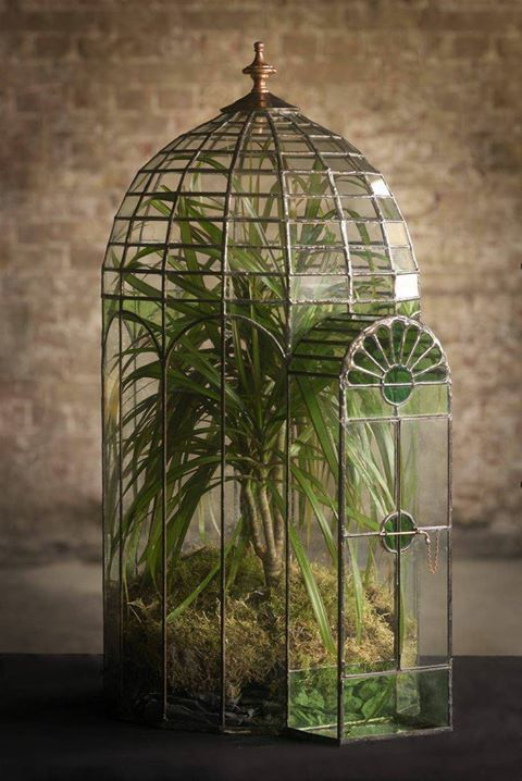 Exquisite terrarium created by Keith Baddams
