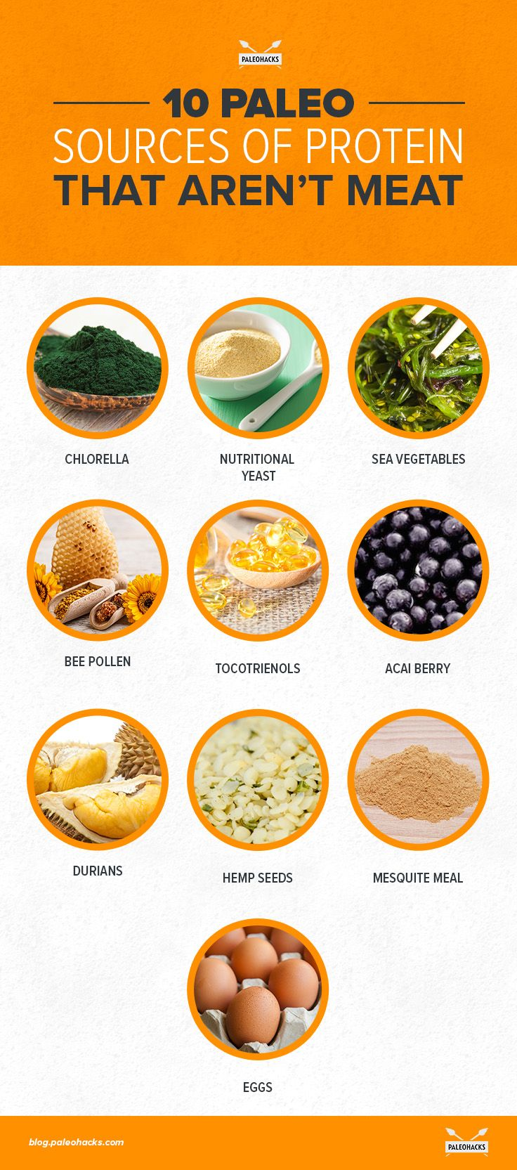 While it may be more difficult for the non-meat eaters, finding high-quality protein is still essential for every type of eater. There are lots of nutrient-dense foods with high protein content; here are some of the top plant-based proteins. Find the full article here: http://paleo.co/proteinsources #paleohacks #paleo