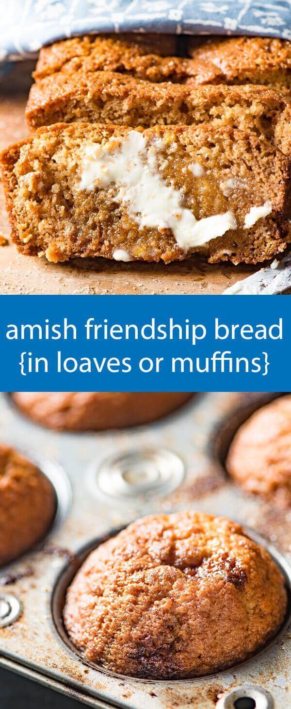 amish friendship bread recipe / amish sourdough starter / sweet sourdough / cinnamon quick bread / easy bread recipe / friendship bread via /tastesoflizzyt/