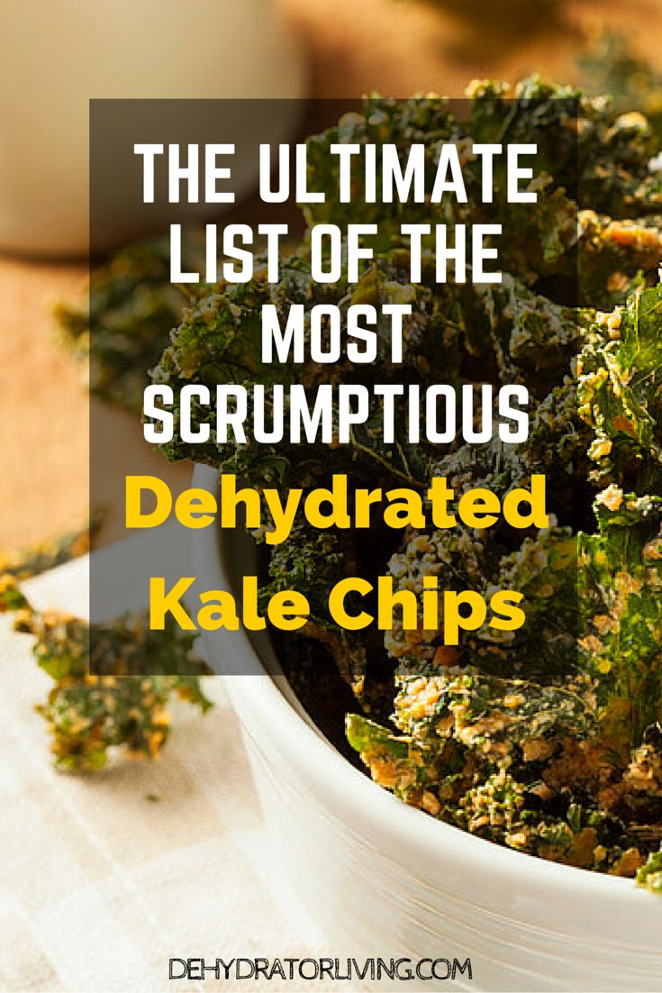 Here's a super list of the most delicious kale chips recipes you've ever seen. Learn to make them all with your food dehydrator. WARNING: You may want to grab and eat these kale chips right off the page.