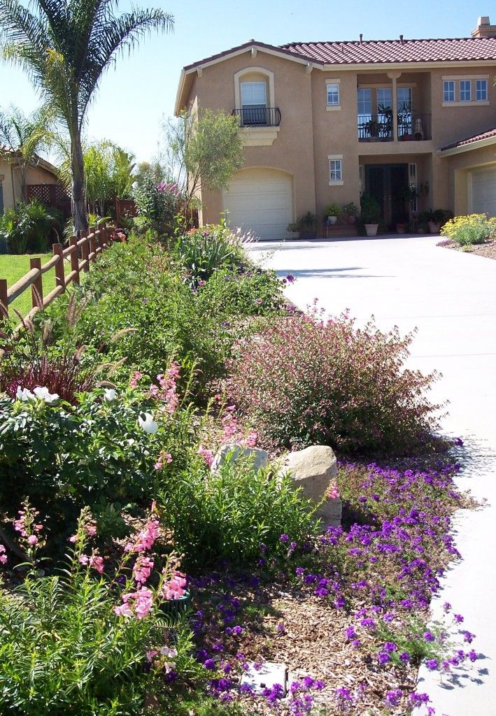 35 best Drought Tolerant Yard images on Pinterest | Landscaping, Diy ...