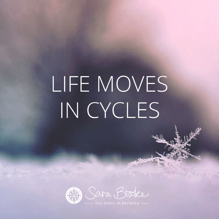 Life moves in cycles x