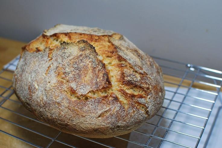 the BEST! homemade crusty sourdough.