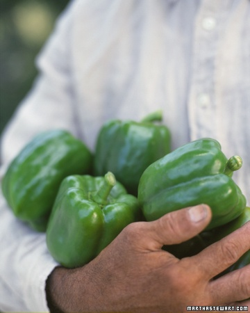 How to Grow Peppers by marthastewart #Peppers #Vegetable_Growing_Guide #marthastewart