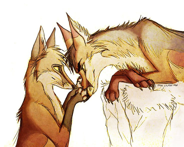 166 best kitsune images on pinterest foxes red fox and fox for Cool fox drawings