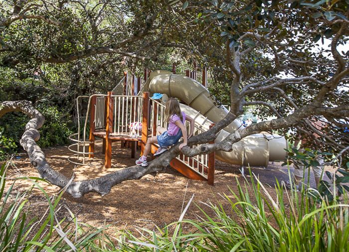 Berry Island Reserve playground_11