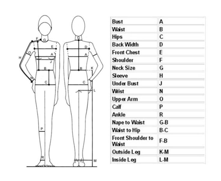 Diagram Of Body Measurements Auto Electrical Wiring Diagram