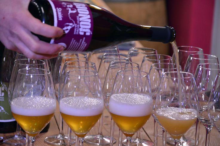 Birra di montagna e di qualità: il birrificio Bionoc - Girovagando in Trentino