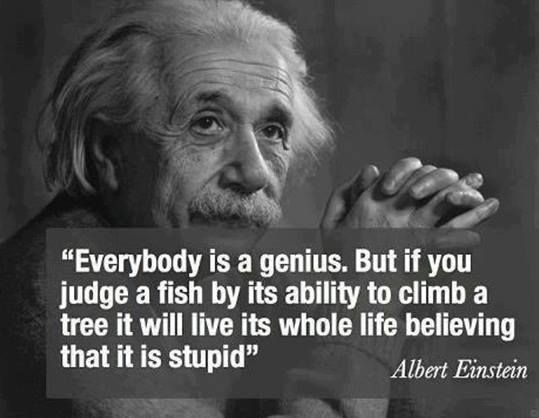 Challenging to respect multiple intelligences within our culture of standardized testing; important nonetheless
