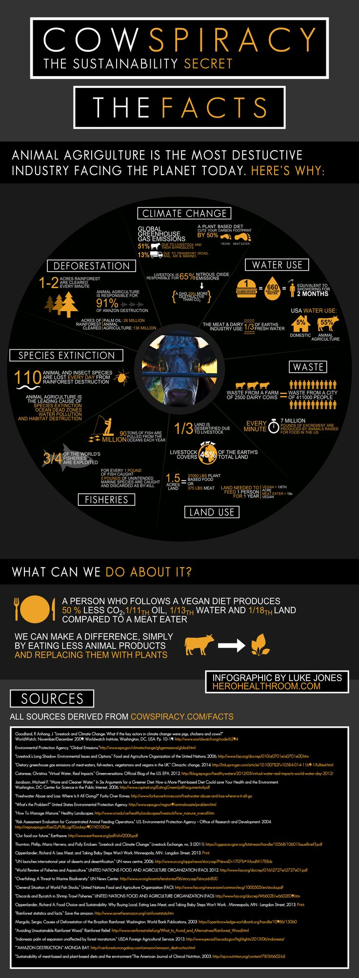 Cowspiracy Infographic Facts