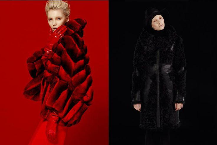 #black #red #chincilla