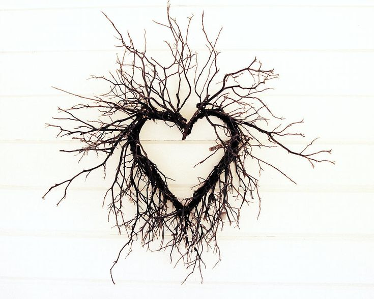 Heart Photograph - Wild Heart by Lupen  Grainne || http://fineartamerica.com/featured/wild-heart-lupen-grainne.html