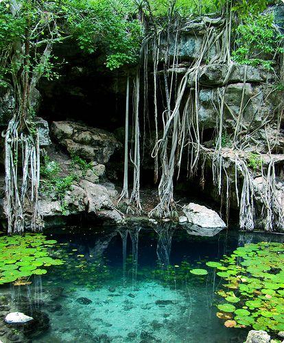 Cenote X-Batún South America