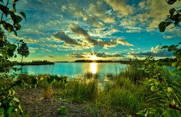 Pond, lake, grass, trees, nature, sky, clouds, dawn
