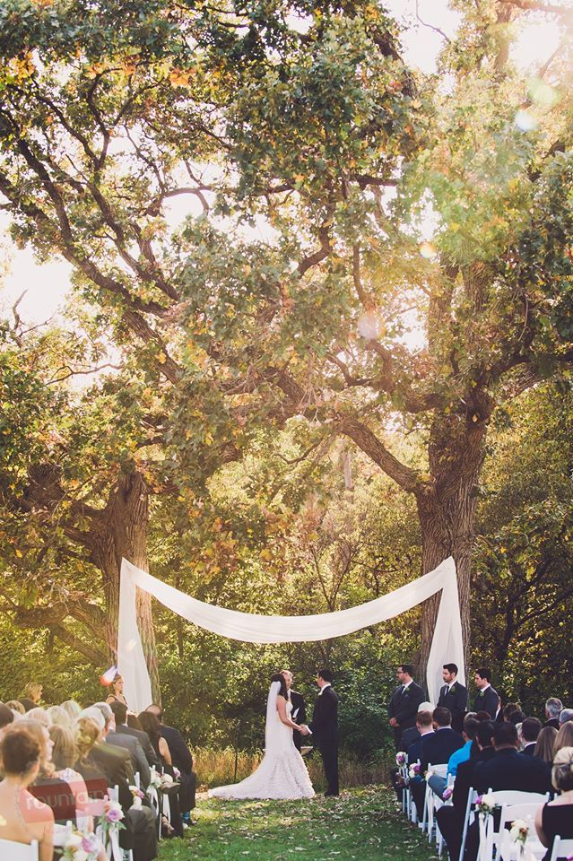 Drapery Between Two Old Oak Trees At The Ceremony Site