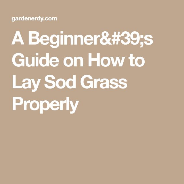 A Beginner's Guide on How to Lay Sod Grass Properly