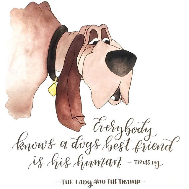 Lady and The Tramp. I thought this was a cute quote from good old Trusty. I LOVE dogs. #LadyAndTheTramp #DisneyFan #ModernCalligraphy