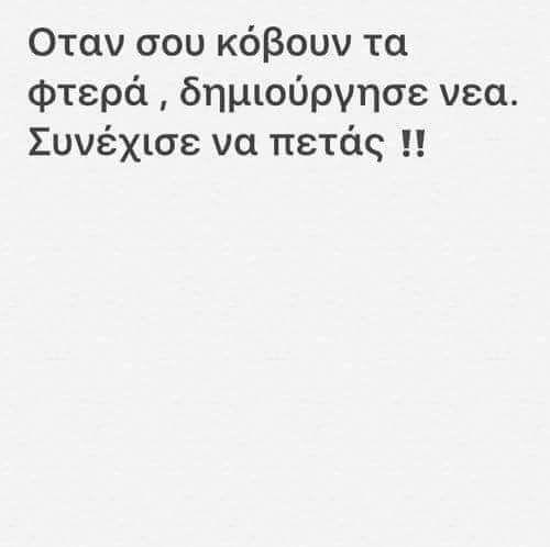 18670841_1556572734373348_5223089084034290682_n.jpg (500×498)