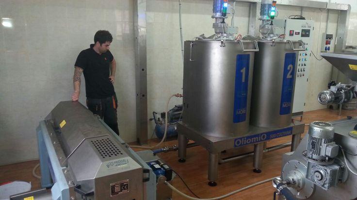 Almazara Cúltivar 500 kg/h instalada en  Cumbres de Abona (Arico - Tenerife).