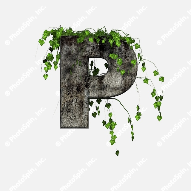 Green Ivy on 3D stone letter - P by Chrisroll