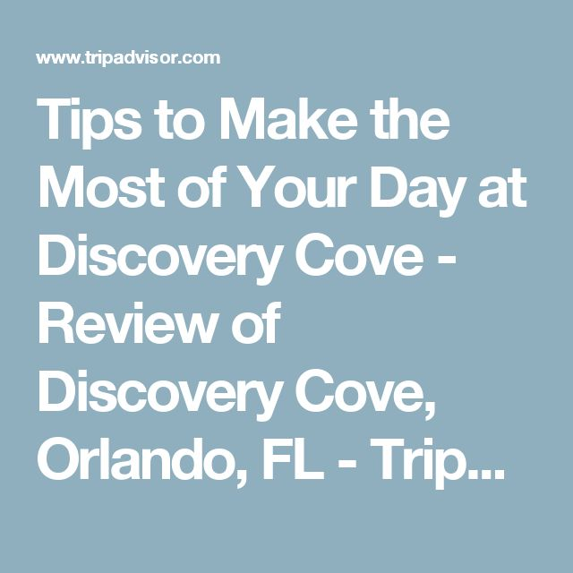 Tips to Make the Most of Your Day at Discovery Cove - Review of Discovery Cove, Orlando, FL - TripAdvisor