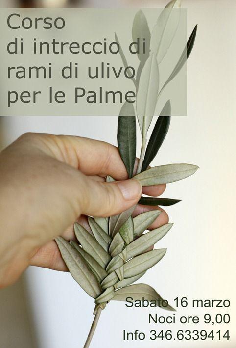 Ogni anno la mattina della domenica delle Palme si ripete una strana magia. Fatta di silenzi devoti, di gesti antichi e mani callose che i...
