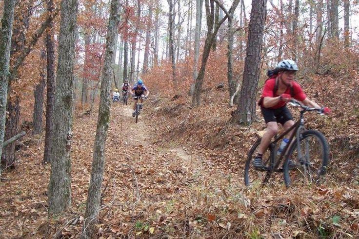 My Top Five: Best Mountain Bike Trails in Denver | Singletracks Mountain Bike News