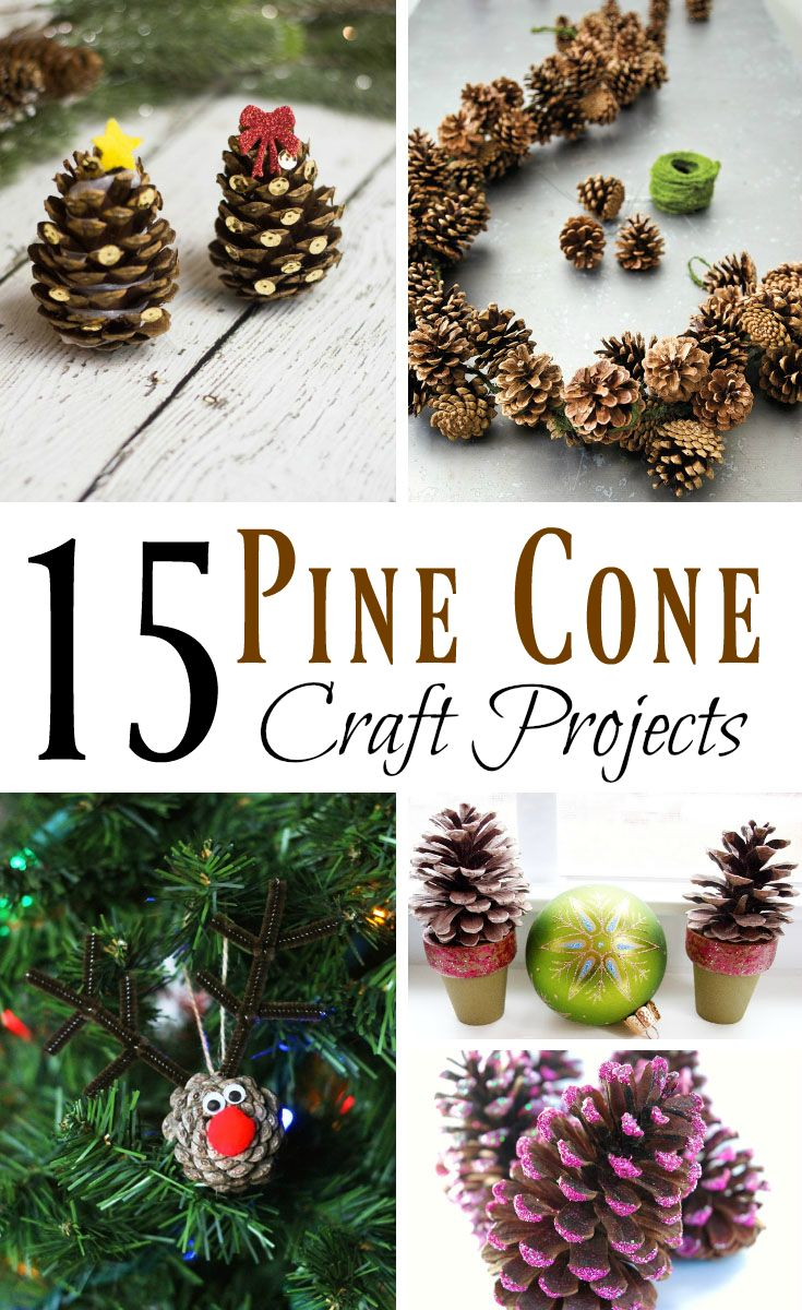 Pine cones are such a great item