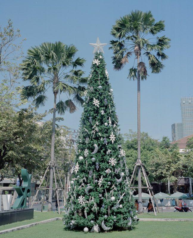 Miti Ruangkritya, Christmas Trees