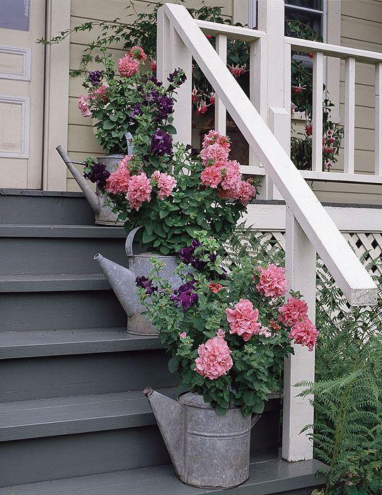 Цветы у крыльца картинки