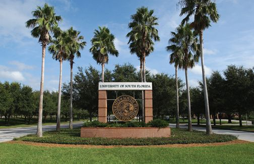 University of South Florida...best years of my life! :-)