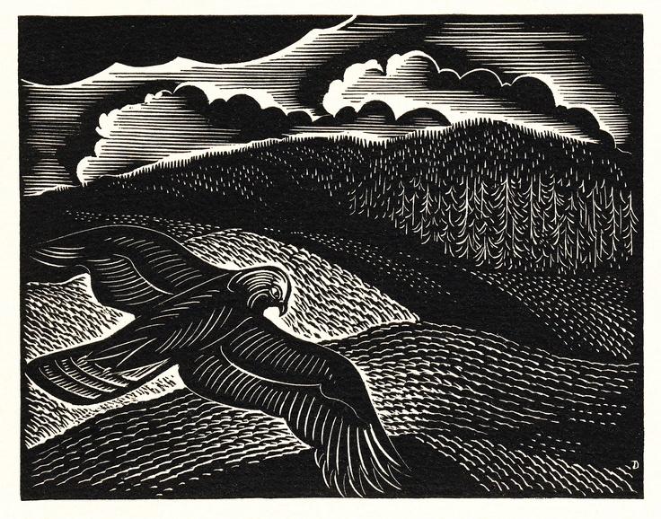 John DePol (American, 1913-2004). Wood engraving of soaring hawk, ca. 1989.