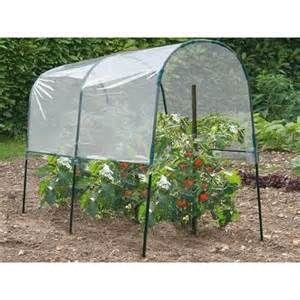 Впечатляющий парниковый парниковый эффект для помидоров # 0 - Садовая томатная оранжерея