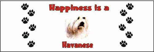 """Click visit site and Check out Hot HAVANESE Shirts. This website is superb.  Tip: You can search """"your first name"""" or """"your favorite shirts"""" at search bar on the top.  #Abyssinian #Cat"""