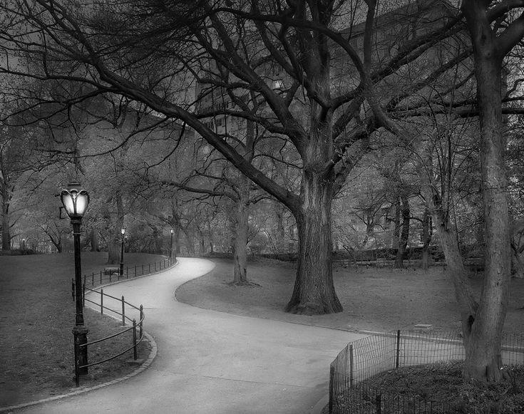 Paisajes fotográficos en blanco y negro de Central park