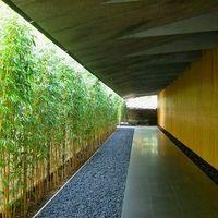 都会の喧騒を忘れさせてくれる日本庭園が素敵。「根津美術館」へ行こう | キナリノ