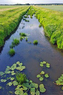 WENDLAND – Wikipedia