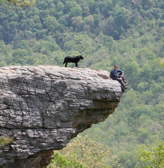1000 Images About Ͼ� Camping Hiking On Pinterest: 1000+ Images About Hiking With Dogs On Pinterest