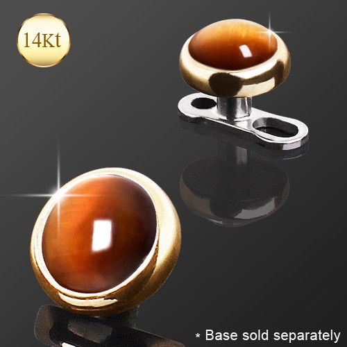 14Kt Yellow Gold With Tiger Eye Dermal Top