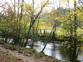 The River Rothay which flows from Grasmere to Rydal Water along White Moss Common