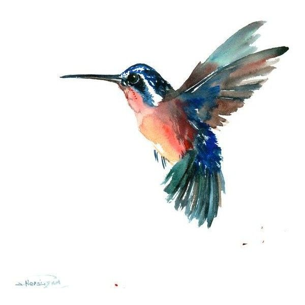 Hummingbird, 12 X 12 in, original watercolor painting, blue orange flying bird art,inimalist bird painting, illustration found on Polyvore featuring home, home decor, wall art, art, animals, animaux, backgrounds, birds, filler and blue painting