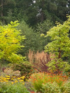 1. Create rich dense layers 2. Create a garden full of life, shelter and food for insects and birds